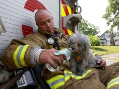 Photos of the day - June 12, 2015Manchester Firefighter John Fusco gives a drink of water to the dog he rescued from a structure fire in Manchester Conn., on Friday June 12, 2015. Fusco rescued the dog from a bedroom on the second floor. The dog was taken by an animal control officer to a veterinarian to be checked out. No one was home at the time of the fire and it was quickly extinguished, the cause is still being investigated. (Jared Ramsdell/Journal Inquirer via AP)
