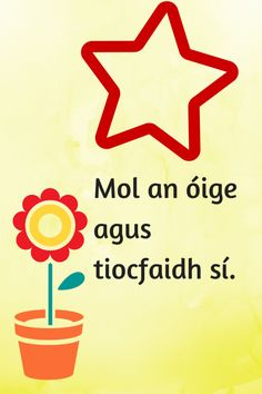 Mol an óige Irish Memes, Irish Customs, Finnegans Wake, Gaelic Words, 6 Class, Irish Proverbs, Irish Language, Irish Culture, Real Friends