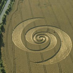 Crop Circle at Stanton Saint Bernard, Wiltshire, UK - 12 August 2002 Crop Circles, Aliens And Ufos, Ancient Aliens, Abstract Sculpture, Sculpture Art, Sculptures, Fibonacci Golden Ratio, Crop Field, Pantheism