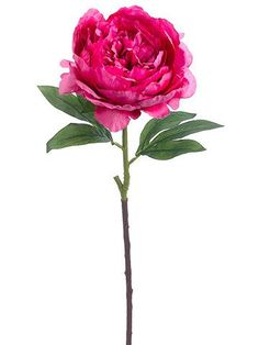 Silk Peony Flower in