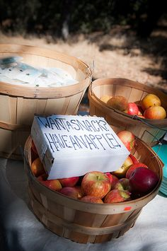 Photo by Purple Turtle Photography. Holly & Darin's Campground wedding. Snack station.