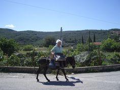 Old woman and donkey / Corfu
