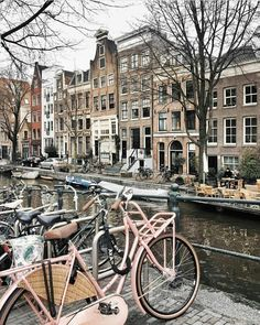 Amsterdam City Streets on your pink bicycle!