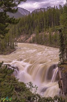 Sunwapta Falls is a waterfall of the Sunwapta River located in Jasper National Park, Canada.   It is accessible via a short drive off the Icefields Parkway that connects Jasper and Banff National Parks. The falls have a drop of about 18.5 metres. Sunwapta is a native word that means turbulent water. It is most spectacular in the late spring when the spring melt is at its peak.