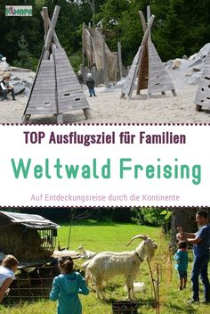 Weltwald Freising - KiMaPa - Discovering, marveling, playing and relaxing – this awaits visitors large and small on their jour - Camping Survival, Camping Hacks, Travel Hacks, Trailers Camping, Overnight Summer Camps, Japanese Poster Design, Acevedo, Camping Aesthetic, Camping Photography