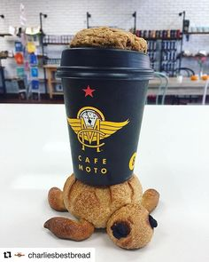 Moto Monday💛📷 @charliesbestbread Enjoy a coffee & a cookie with Squirt the turtle.☕️🍪🐢 #CharliesBestBread #CafeMoto  #PacificBeach #PB #SanDiegoCa #GarnetAve #Cookies #Coffee #SDCoffee #SanDiegoCoffee #Caffeine #SanDiegoLife #EatSanDiego #ILikeTurtles #YouStayHungrySD #SDFoodie #EdibleSD #YelpSanDiego #LaJolla #MissionBeach #MissionBay #Love #FairTrade #SanDiegoBakery #SanDiegoGram #SanDiegoCalifornia #ThatPbLyfe #PacificBeachSanDiego #ForwardDrinking #lajollalocals #sandiegoconnection…