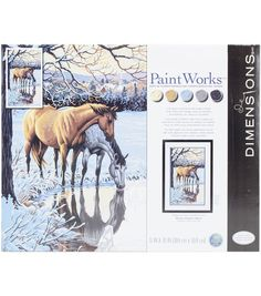 Dimensions Paint Works Paint By Number Kit - Reflections