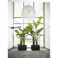 Elho Pure Soft Brick Long Plantenbak 80 cm Pots, Source Of Inspiration, Bricks, Pure Products, Modern, Home Decor, Ideas, Trendy Tree, Decoration Home