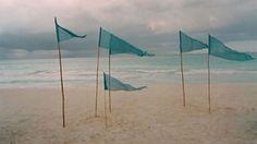 aqua beach flags