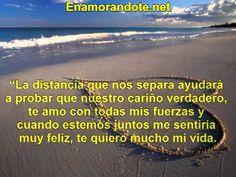 409 Mejores Imagenes De Videos De Frases De Amor Y Amistad