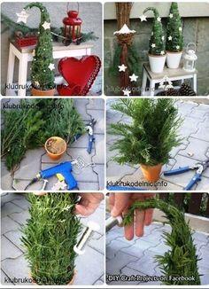Kleiner Weihnachtsbaum Gebändigt für Blumentopf o.ä.
