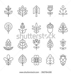 Set of outline stroke icons with tress, leaves and flowers. Vector illustration for your cute design. It can be used as - logo, pictogram, icon, infographic element.