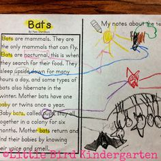 Draw It!   21 Cool Anchor Charts To Teach Close-Reading Skills