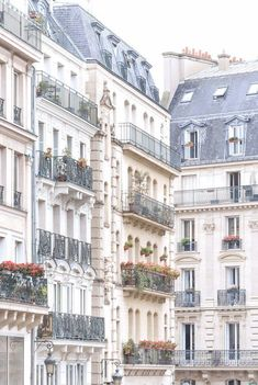 Paris Architecture Photograph – Window Boxes and Lamp Posts, Travel Photography, Large Wall Art, Neutral French Home Decor, Fine Art Photo – Sara Duc - Valentines Fine Art Photo, Photo Art, Iron Balcony, French Architecture, Architecture Sketchbook, Architecture Graphics, Victorian Architecture, Architecture Student, Architecture Portfolio