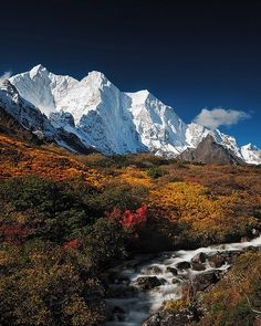 Autumn in Karta Valley, Himalayas, Tibet (by Available Light Images).