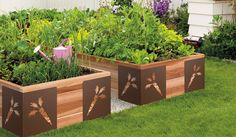 m brace -- raised garden beds