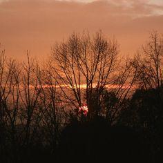 Red sunset  #redsunset #sunset #sun #autumn #autumn #fall  #fall #czech #czechnature  #czechnature #trees #trees #nature #photo #photos #photography #photoshoot  #photoshooting #photoofnature