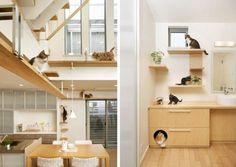 Alle ruimte voor je kat