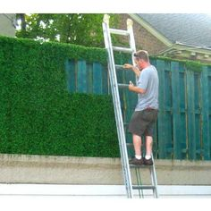 Greenwall Hedge Installation on to used shipping pallets  Artificial Boxwood Hedge Tiles from expressgrass.com