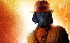 Just Another Day for the Canine Indiana Jones
