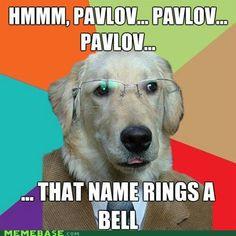 Funny Psychology meme