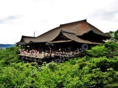 Photos from Japan: The Sayonara Trip Japan Travel, Japan Trip, Kyoto Japan, Osaka, Tokyo, Cabin, Temples