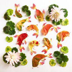 Koi by Bridget Beth Collins, Flora Forager #Koi