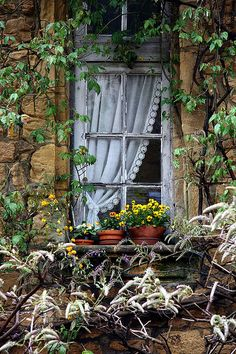 French cottage window - Sarlat, Dordogne - by © Yvan LEMEUR Cottage Windows, Garden Windows, Old Windows, Windows And Doors, French Cottage, Cottage Style, French Farmhouse, Gazebos, Window View