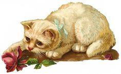 free download vintage art   Click one of the vintage cats below to view and download a larger ...