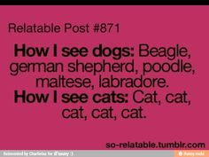Yup, I can even some time tell the mutts dog breeds that's in them, but a cat is a cat.