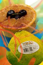 Uniq Fruit has a tangerine grapefruit taste. It's great if put under the broiler with a little rum topping. Recipes http://www.brookstropicals.com/nutrition/uniq_19.html#rummedup