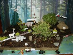 making animals for diorama | Forest Shoebox Diorama