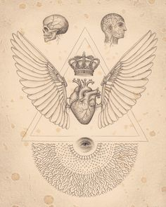 Soul of Science. / heart and skull / sacred geometry / Daniel Martin Diaz / Anatomical <3