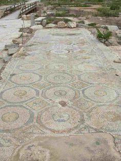 Large mosaic at Sepphoris