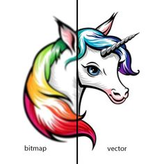 I will convert your logo or image into vector with cheap price and fas