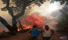 """رصد أكثر من 150 حريقًا في الجزائر خلال خلال 48 ساعة: أحصت مصالح الدفاع المدني """" الحماية المدنية """" أكثر من 150 حريقا خلال 48 ساعة الماضية,…"""
