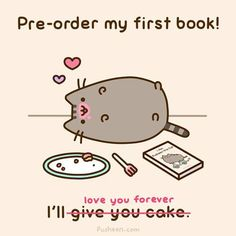 Pre-order my first book!