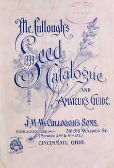 McCullough's seed catalogue and amateur's guide 1899 : J.M. McCullough's Sons : Free Download, Borrow, and Streaming : Internet Archive Family Day Quotes, Vintage Seed Packets, Garden Labels, Seed Packaging, Seed Catalogs, Vintage Lettering, Calligraphy Fonts, Vintage Labels, Letter Writing