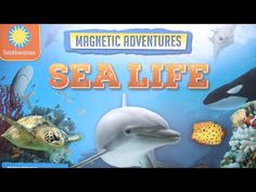 Smithsonian Magnetic Adventures Sea Life | TTPM Review