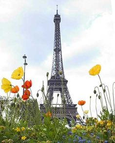 Paris in Summer @Joshua Arndt Lee #SummerEssentials