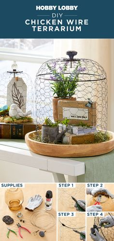 Create your own terrarium with chicken wire to give your space an instant upgrade.