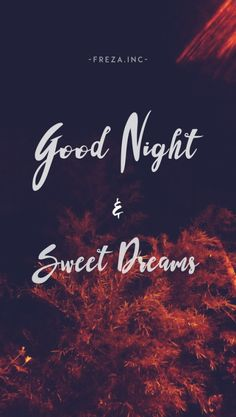 F R E Z A I N C Good Night Wallpapergood