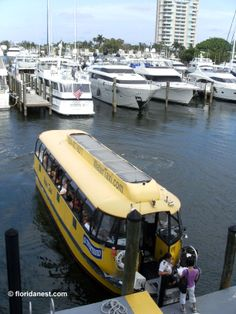 Water Taxi (Fort Lauderdale, Florida)