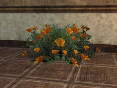 more flower ideas