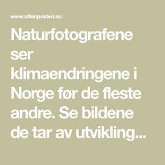 Naturfotografene ser klimaendringene i Norge før de fleste andre. Se bildene de tar av utviklingen. Pictures