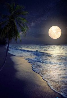 Beautiful fantasy tropical beach with Milky Way star in night skies full moon - Retro style artwork with vintage color tone (Elements of this moon image furnished by NASA) Beautiful Moon, Beautiful World, Beautiful Places, Foto Picture, Moon Images, Full Moon Pictures, Shoot The Moon, Good Night Image, Amazing Nature
