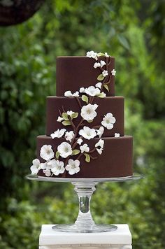 The chocolate on this cake makes the white flowers really stand out.