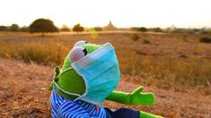 Fight Dust Allergy With Spring Cleaning - Book An English-Speaking . Fight Dust Allergy with Spring Cleaning - Book an English-Speaking - Entertainment Funny Profile Pictures, Reaction Pictures, Sapo Kermit, Funny Kermit Memes, Kermit The Frog Meme, Les Muppets, Sapo Meme, Frog Wallpaper, Dust Allergy