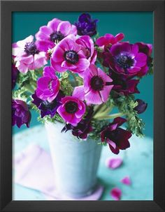 Purple Anemones in a Vase Photographic Print by Michael Paul at AllPosters.com