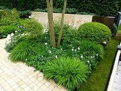 Znalezione obrazy dla zapytania Chelsea Flower Show 2013 _ Herry Lawford Garden Shrubs, Shade Garden, Garden Show, Dream Garden, Back Garden Design, Chelsea Flower Show, White Gardens, Contemporary Garden, Back Gardens